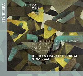 Pyotr Ilyich Tchaikovksy: Serenade for Strings, Rafael d'Haene: Waar Coenraets is Turner (Etcetera)