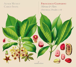 Francesco Gasparini: Mirena & Floro (Intermezzi, Dresden 1718) (Glossa)