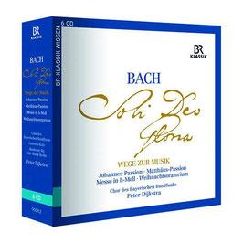 Johann Sebastian Bach: Wege zur Musik, Werkeinführungen Johannes-Passion, Matthäus-Passion, Messe in h-Moll, Weihnachtsoratorium mit Musikbeispielen (6CD, BR Klassik)