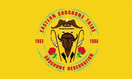 Eastern Shoshone Tribe Flag