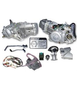 ZS190 kompletter Motor als Umbaukit