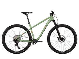 Drössiger Ride Hard Trail 29 Basis