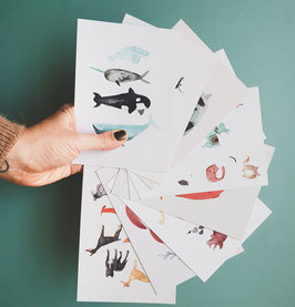 SET TIERE Postkarten 9 Stück