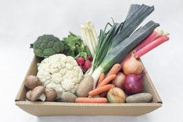 regionales, saisonales Gemüsekistl