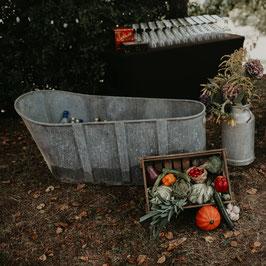 Grande baignoire en zinc