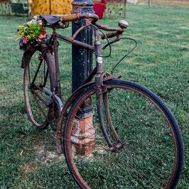 Vélo Fernand