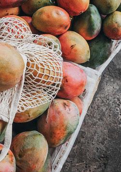 Mangolicious by Romana Huber