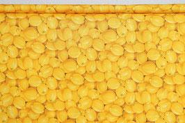 Zitronen, gelb, PW