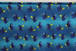 Jersey, Findet Nemo!, Dori
