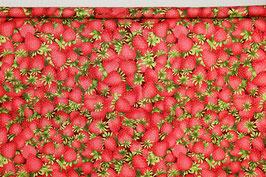 Erdbeeren, grafisch, PW