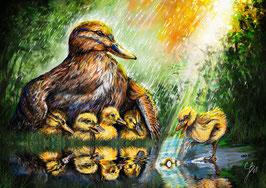 Entenmutter (Ermutigung Anders sein zu dürfen)