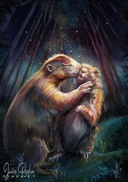 Murmeltiere (Zuneigung)
