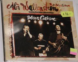 "Abi Wallenstein & BluesCulture feat. Steve Baker & Martin Röttger  - ""Blues Culture"""