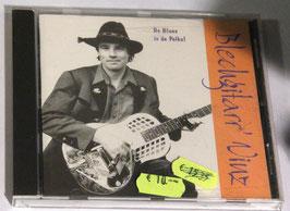 Blechgitarr' Vinz  - Da Blues is de Polka