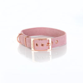 Halsband  ALTROSA (Cordstoff) Dornschnalle
