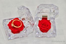 Juwel-Box mit Infinity Rose