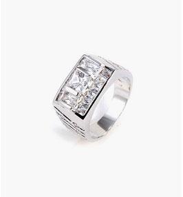 Herren Ring HX10028