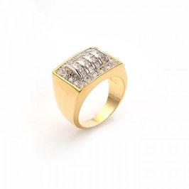 Herren Siegel Ring HX10166