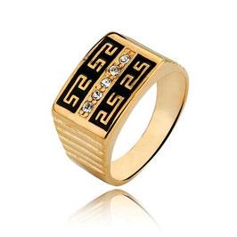 Herren Siegel Ring HX100632