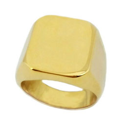 Herren Siegel Ring HR0084