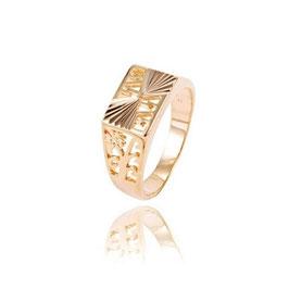 Herren Siegel Ring HX100063