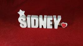 Beton, Steinguss Buchstaben 3D Deko Namen SIDNEY als Geschenk verpackt!
