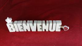 Beton, Steinguss Buchstaben 3D Deko Stern Namen BIENVENUE als Geschenk verpackt!