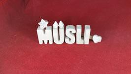 Beton, Steinguss Buchstaben 3D Deko Stern Namen MÜSLI als Geschenk verpackt!