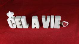 Beton, Steinguss Buchstaben 3D Deko Stern Namen CEL A VIE als Geschenk verpackt!