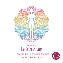 "Meditation ""Harmonisiere dein Drüsensystem""  (CD)"
