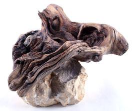 """Holz Skulptur """"Wurzelschale"""""""