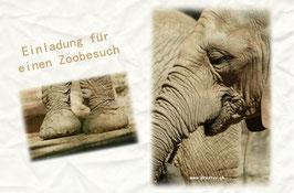 elefant einladung zoobesuch