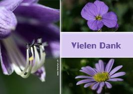 violett vielen dank