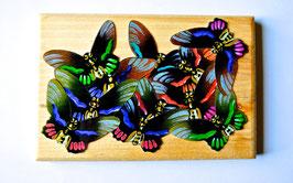 Petit puzzle papillons