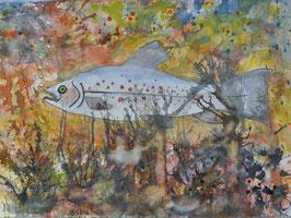 Forelle, Aquarell, 30x40 cm