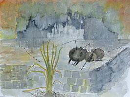 Ameisen, Aquarell, 36x51 cm