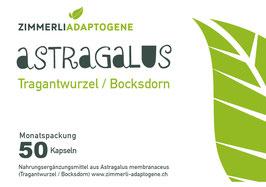 Astragalus Kapseln