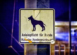 Hundeverordnung