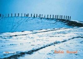 Halde Haniel