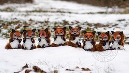 Foxes Artdoll - Males