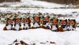 Foxes Artdoll