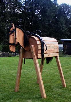 Agilo - Das Voltigierpferd - Sitzhöhe 140 cm