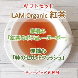 イラムオーガニック紅茶 2019年春摘み・夏摘み ティーパック3個入り × 2