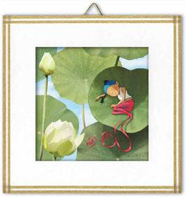 A l'ombre du lotus