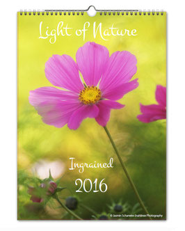 "Kalender Light of Nature ""Ingrained"" 2016"