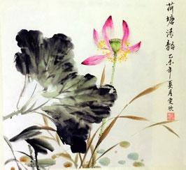 Melodie von Lotus