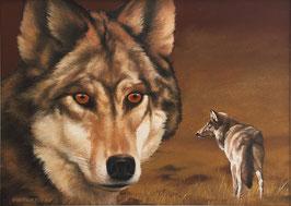 """""""Die Wölfe sind wieder da!"""""""