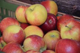 Diverse Äpfel