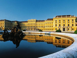 Private Schönbrunn palace by Minvan or Limousine, 3 hours