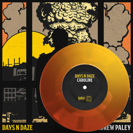 DAYS N DAZE / ANDREW PALEY 7″